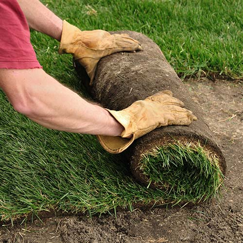 Sod & Sprinkler Installation Services Tea Sioux Falls