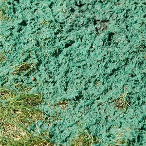Hydroseeding Lawn Experts Sioux Falls SD